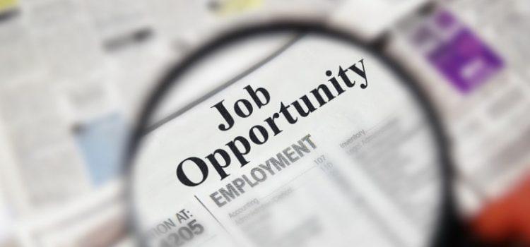 Tips memilih karir